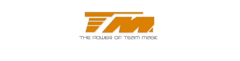 Recambios coches RC Team Magic
