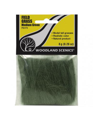Field Grass, Hierba Alta para Maquetas y Dioramas, Color Verde Oscuro (WOODLAND SCENICS FG174) WOODLAND SCENICS FG174 Diorama...